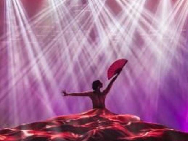 Ausflüge und Sehenswürdigkeiten 'Nachtleben, Dinner und Abends Shows auf Mallorca'